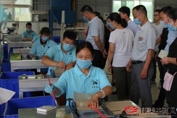 转型发展提升思想理念 艾草产业助力中医事业