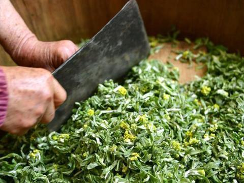 湖北宣恩:花草搓揉出的土家美味