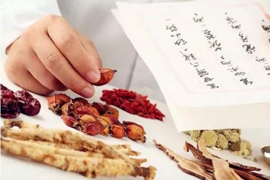 共商中国东盟传统中医药发展