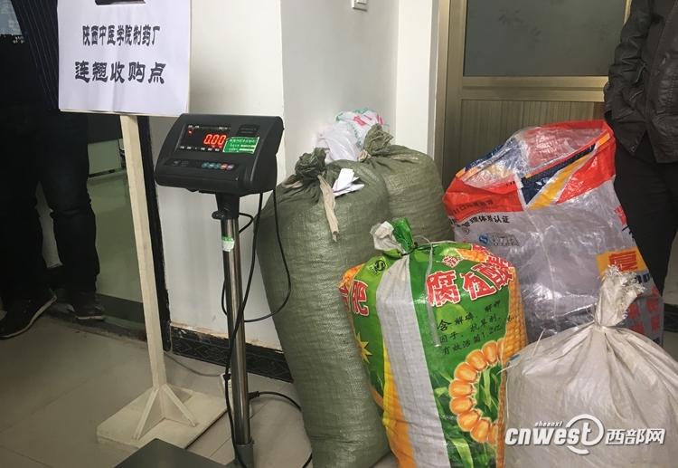 陕中医产业扶贫培训实录:中药材种植产业见成效