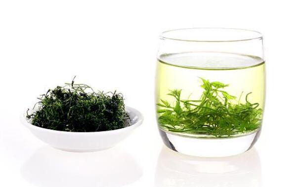 亳州药市:7月花茶类品种概述
