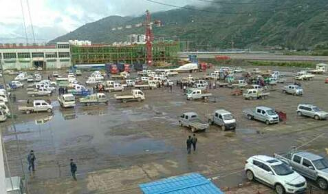 7月11日岷县市场当归、黄芪、党参价格快讯