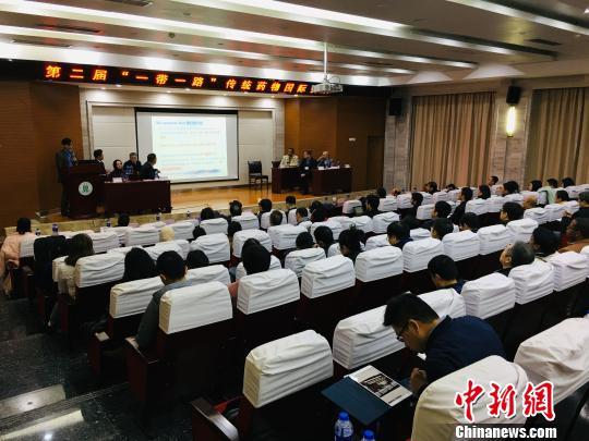"""""""一带一路""""传统药物国际会议在武汉召开"""