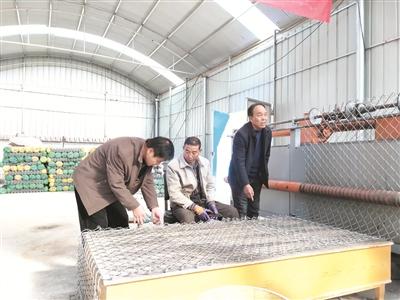 山西平定县东回镇前洪水村:种植连翘开工厂 盘活资源谋发展