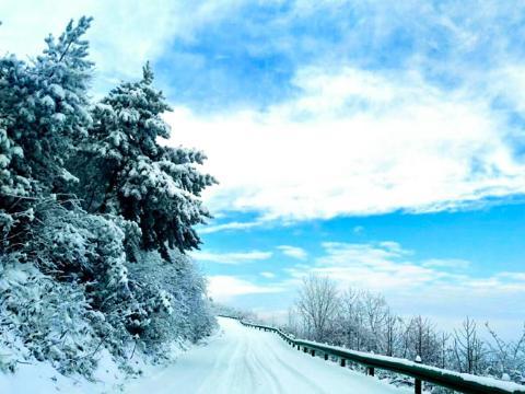 湖北五峰大雪覆盖 地产药材采收停止