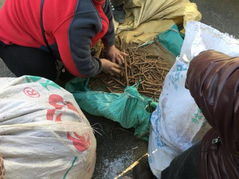 河北安国中药材籽种集市交易多