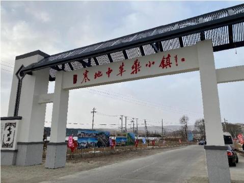 黑龙江:发展寒地中药材特色产业
