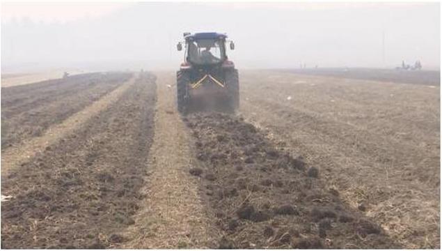 黑龙江林口:发展中药材种植 拓宽农民增收路