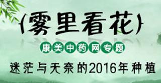 2016年中药材种植专题